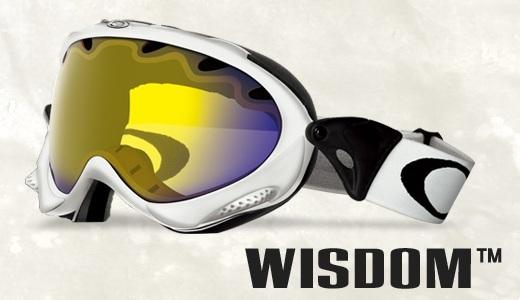 WISDOM_image.jpg